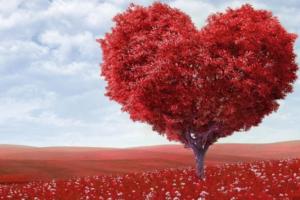 yazin kalp sagligini korumak icin 9 oneri 20072002 m2 300x200 - Uzaktan Aşk Büyüsü Nasıl Yapılır